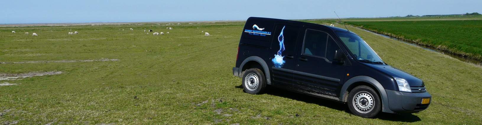 Ford op grasveld
